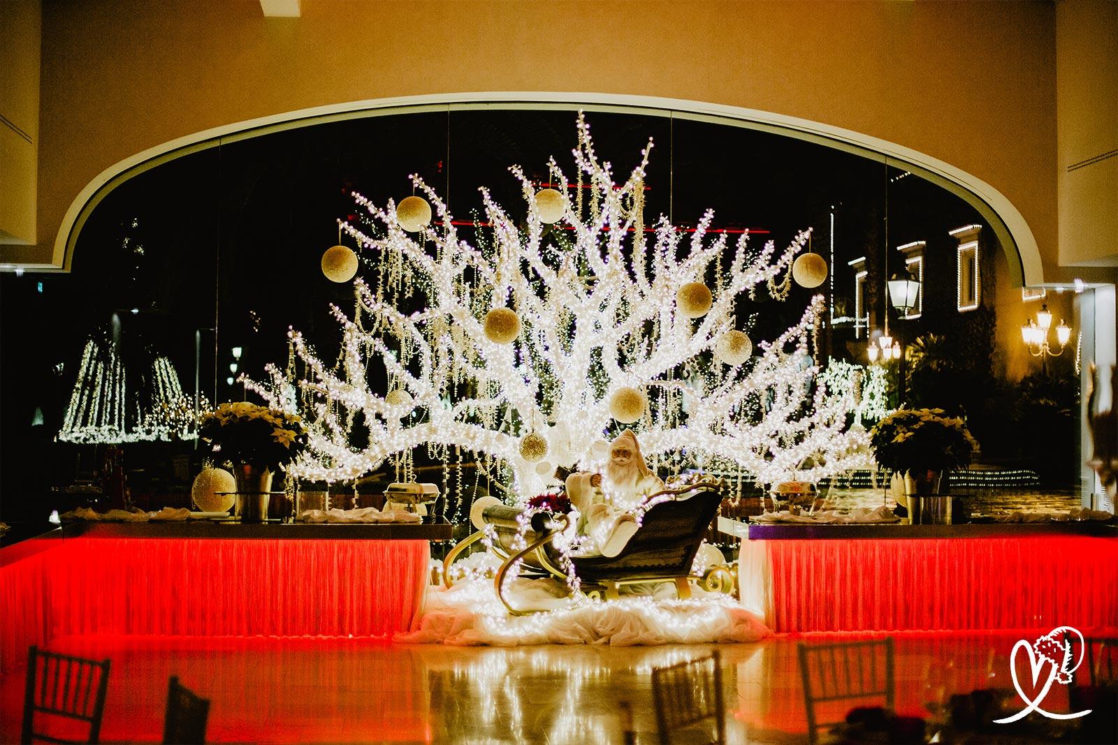 eventi albero illuminato